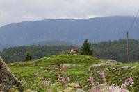 20130806_Urlaub_Norwegen-0614_LR